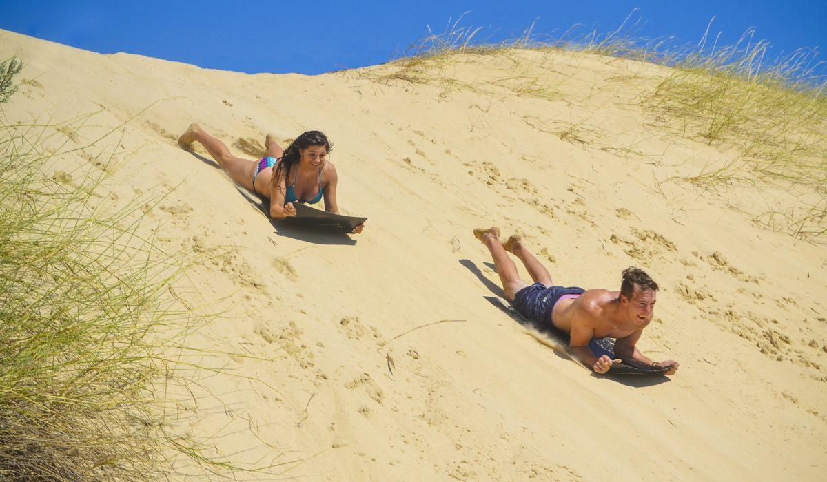 Highest Dunes South Africa Sandboarding Sand Sledding near Addo